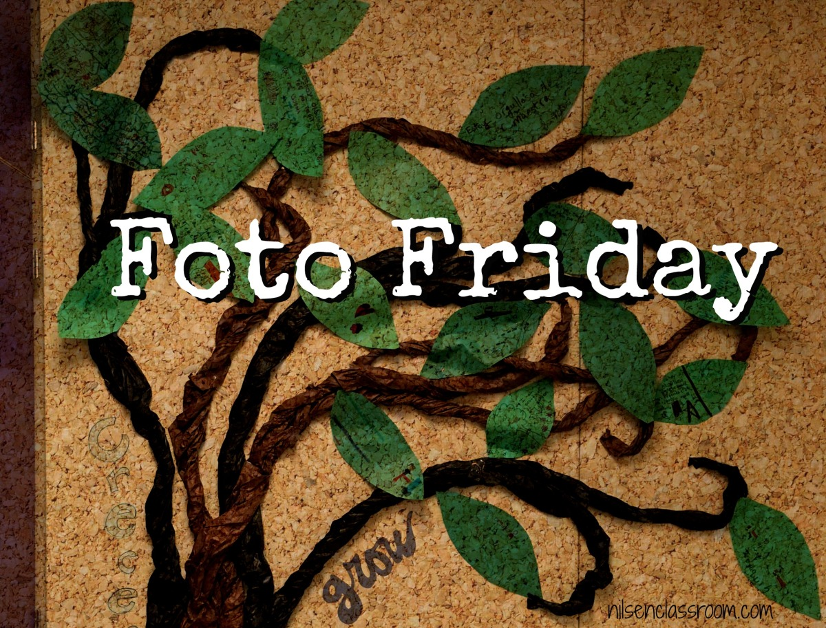Foto Friday